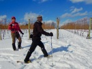 Snowshoeing in the vineyards of Domaine de Grand Pre, Nova Scotia (Allan Lynch Photo)